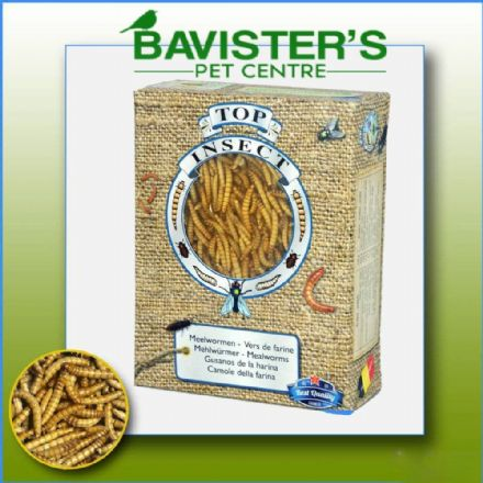 TOP INSECT FROZEN MEALWORMS